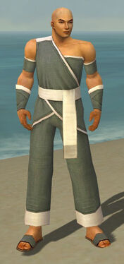 Monk Ascalon Armor M gray front.jpg