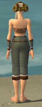 Monk Elite Judge Armor F gray arms legs back.jpg