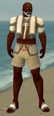 Monk Sacred Armor M gray chest feet front.jpg