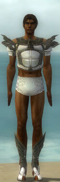Paragon Ancient Armor M gray chest feet front.jpg