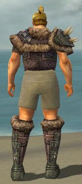 Warrior Charr Hide Armor M gray chest feet back.jpg