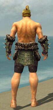 Warrior Elite Charr Hide Armor M gray arms legs back.jpg