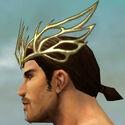 Dwayna's Regalia M dyed head side.jpg