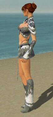 Elementalist Iceforged Armor F gray side.jpg