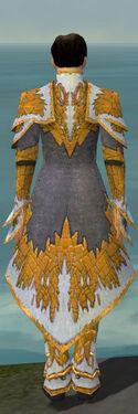 Elementalist Iceforged Armor M dyed back.jpg