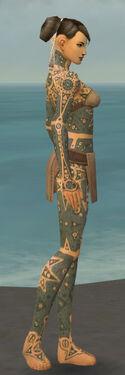 Monk Star Armor F gray side.jpg