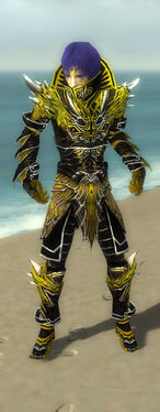 Necromancer Elite Luxon Armor M dyed front.jpg
