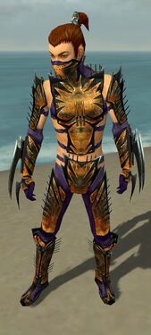 Assassin Elite Exotic Armor M dyed front.jpg
