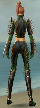 Assassin Exotic Armor F dyed back.jpg