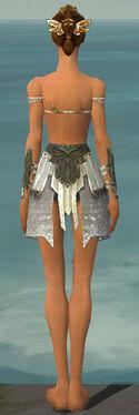 Paragon Elonian Armor F gray arms legs back.jpg
