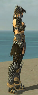 Warrior Silver Eagle Armor F dyed side alternate.jpg