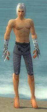 Elementalist Elite Iceforged Armor M gray arms legs front.jpg