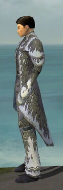 Elementalist Iceforged Armor M gray side.jpg