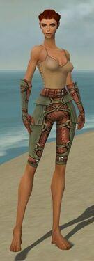 Ranger Ascalon Armor F gray arms legs front.jpg