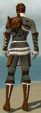 Ranger Canthan Armor M gray back.jpg