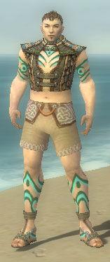 Monk Elite Luxon Armor M gray chest feet front.jpg