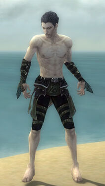 Necromancer Elite Cabal Armor M gray arms legs front.jpg