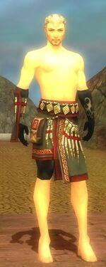 Ritualist Elite Canthan Armor M gray arms legs front.jpg
