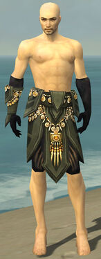 Ritualist Elite Kurzick Armor M gray arms legs front.jpg