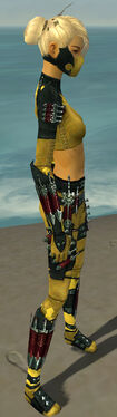 Assassin Seitung Armor F dyed side.jpg