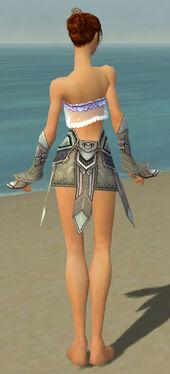 Elementalist Asuran Armor F gray arms legs back.jpg