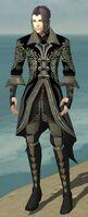 Elementalist Elite Kurzick Armor M gray front.jpg