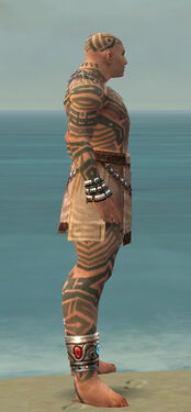 Monk Labyrinthine Armor M gray side.jpg