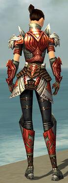 Warrior Deldrimor Armor F dyed back.jpg