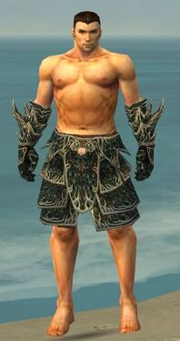 Warrior Elite Luxon Armor M gray arms legs front.jpg