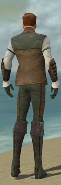 Mesmer Enchanter Armor M gray back.jpg