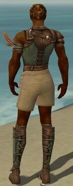 Ranger Ascalon Armor M gray chest feet back.jpg
