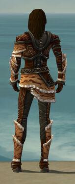 Ranger Vabbian Armor M gray back.jpg