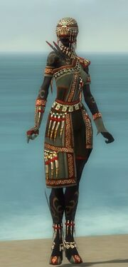 Ritualist Elite Canthan Armor F gray front.jpg