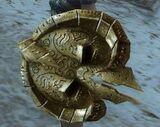 Starter Shield.jpg