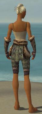 Warrior Charr Hide Armor F gray arms legs back.jpg