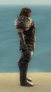 Warrior Deldrimor Armor M gray side.jpg