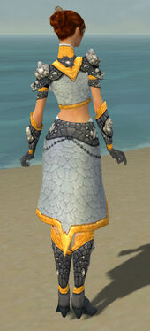 Elementalist Stoneforged Armor F dyed back.jpg