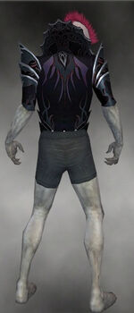 Gloomcrest Tunic M gray back.jpg