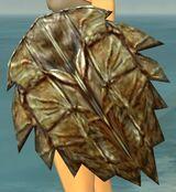 Kappa Shield.jpg