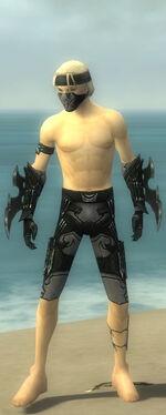 Assassin Kurzick Armor M gray arms legs front.jpg