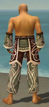 Monk Canthan Armor M gray arms legs back.jpg