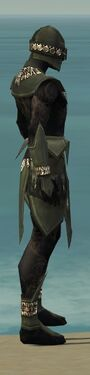 Ritualist Kurzick Armor M gray side alternate.jpg