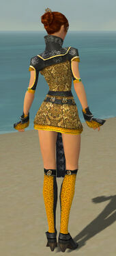 Elementalist Canthan Armor F dyed back.jpg