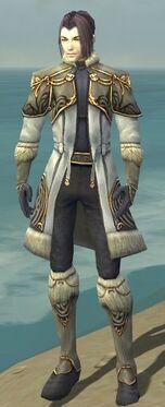 Elementalist Norn Armor M gray front.jpg