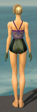 Mesmer Shing Jea Armor F gray arms legs back.jpg