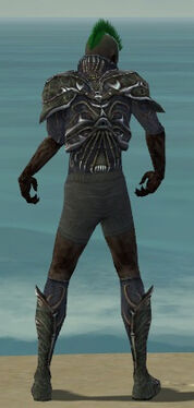 Necromancer Elite Necrotic Armor M gray chest feet back.jpg