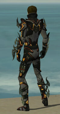 Assassin Elite Kurzick Armor M gray back.jpg