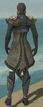 Elementalist Elite Stoneforged Armor M gray chest feet back.jpg