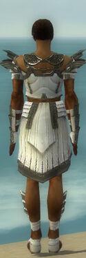 Paragon Ancient Armor M gray back.jpg
