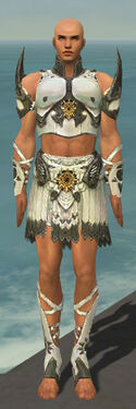 Paragon Sunspear Armor M gray front.jpg
